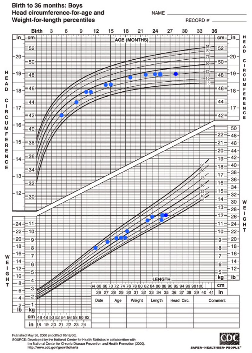 Plotted CDC Charts for Maximo's Height, Weight and Head Circumference